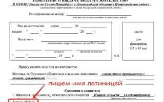 Заявление о выдаче вида на жительство: скачать бланк и образец заполнения