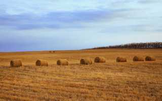 Правовой режим и особенности земель сельскохозяйственного назначения