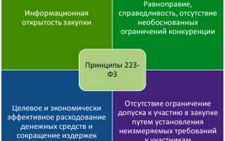 Федеральный закон от 18.07.2011 n 223-фз (ред. от 24.04.2020) «о закупках товаров, работ, услуг отдельными видами юридических лиц»