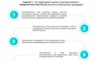 Единый реестр участников закупок: инструкции