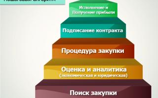 Портал единой автоматизированной информационной системысистема поддержки социально ориентированных некоммерческих организаций
