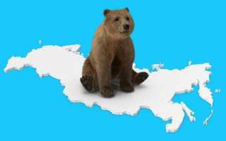 Правила проведения референдума в россии. досье