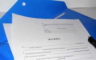 Как написать коллективное письмо: особенности, требования и образец