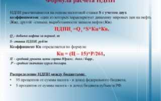 Налог на добычу полезных ископаемых (ндпи)