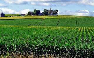 Статья 80. земельного кодекса рф. фонд перераспределения земель