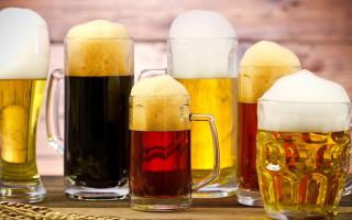 Срок годности пива не должен превышать трех месяцев. как правильно выбрать пиво: секреты и полезные советы