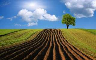 Правовой режим земель сельскохозяйственного назначения