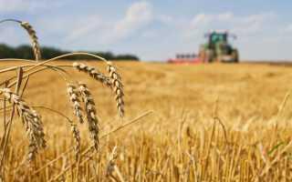 Справочные данные об органическом сельском хозяйстве в россии