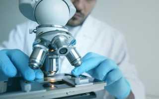 Антиоксидант e 320: лекарство будущего или опасный канцероген?